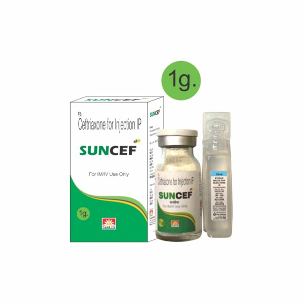 SUNCEF 1GM